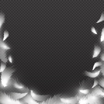 Abstrait avec des plumes moelleuses blanches. cadre de plume de vecteur. illustration d'un oiseau de plumes, moelleux et plume, bordure de plumage