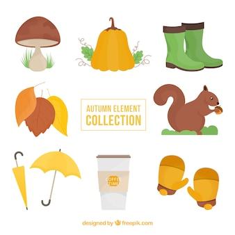 Accessoires d'automne et autres articles
