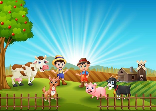 Activités des jeunes agriculteurs avec des animaux à la ferme