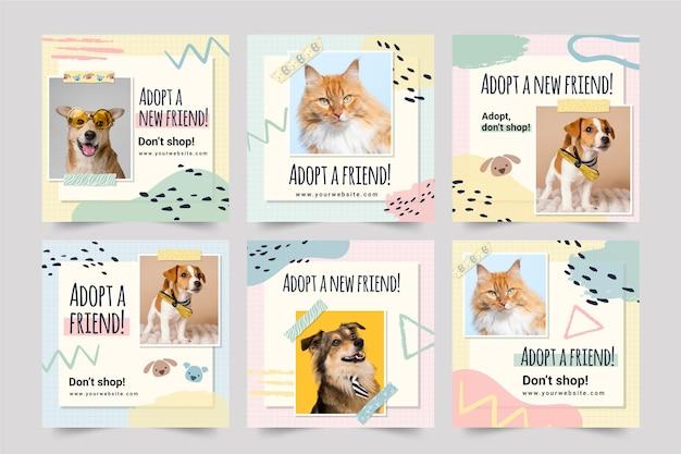 Adopter un animal de compagnie instagram posts