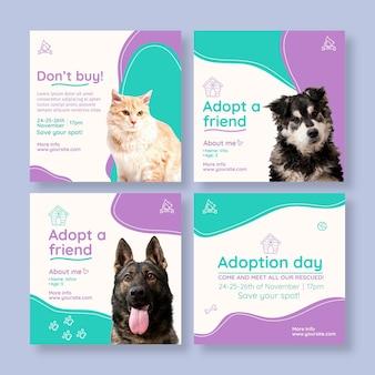 Adoptez un animal de compagnie instagram posts