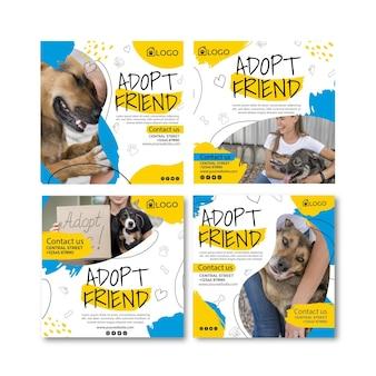 Adoptez un ensemble de publications instagram pour animaux de compagnie