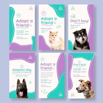 Adoptez des histoires instagram pour animaux de compagnie