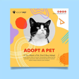 Adoptez un modèle carré de flyer pour animaux de compagnie