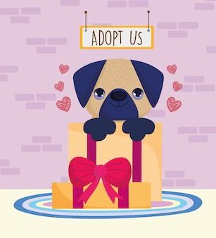 Adoptez-nous chien à l'intérieur cadeau