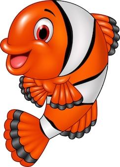 Adorable bébé poisson clown posant