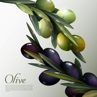 Affiche abstraite de branches d'olivier