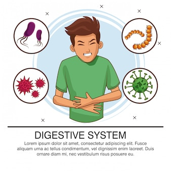 Affiche de bactéries du système digestif
