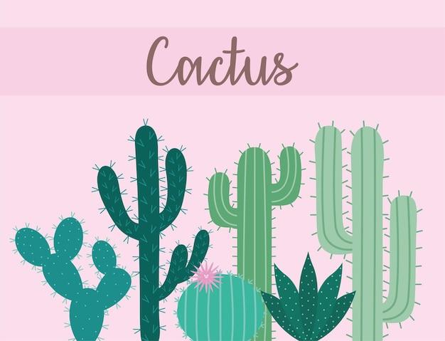Affiche de cactus verts