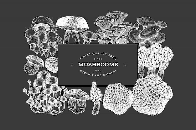 Affiche de champignon