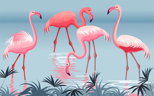 Affiche flamant rose.