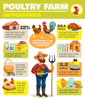 Affiche infographique de ferme avicole