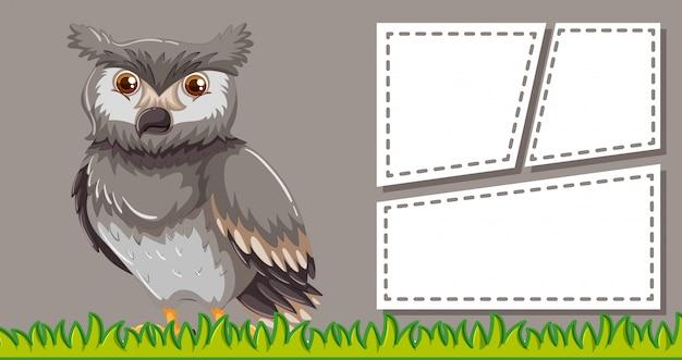 Affiche de modèle cadre animal avec fond blanc
