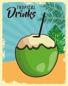 Affiche de noix de coco tropicale