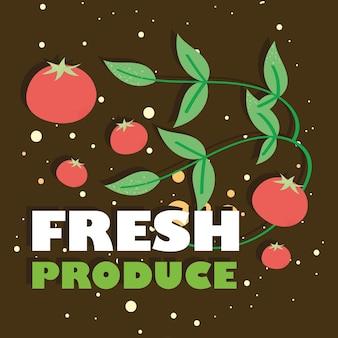 Affiche de produits frais