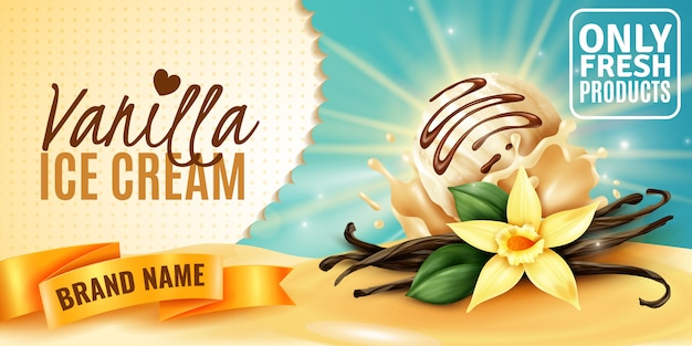 Affiche publicitaire de produit à la crème glacée à la vanille avec des gousses de graines aromatiques de fleurs de plantes réalistes