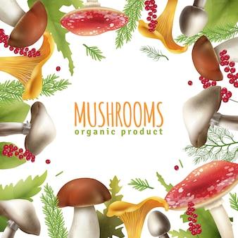 Affiche réaliste de fond de cadre de champignons
