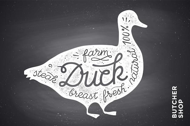 Affiche avec silhouette de canard rouge. caractères
