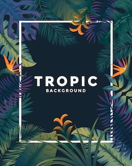 Affiche tropicale avec cadre