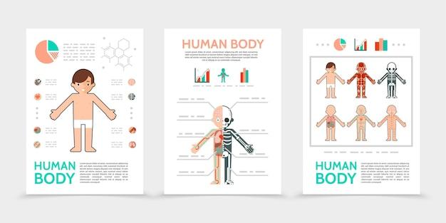 Affiches de corps humain plat