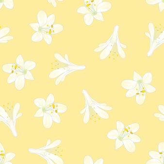 Agapanthe de neige blanche sur fond jaune
