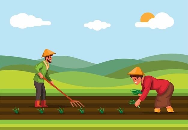L'agriculteur plante du riz dans l'industrie agricole des rizières en asie vecteur illustration de scène