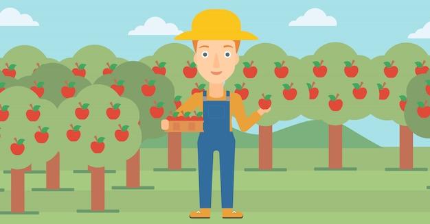Agriculteur ramassant des pommes