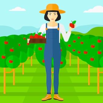 Agriculteur ramassant des pommes.