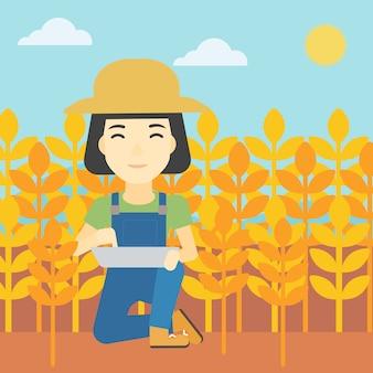 Agriculteur avec tablette sur champ