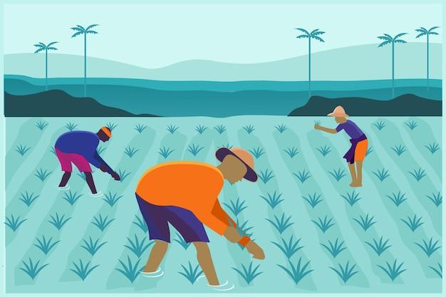 Agriculteur travaillant dans le vecteur d'illustration de champ de riz