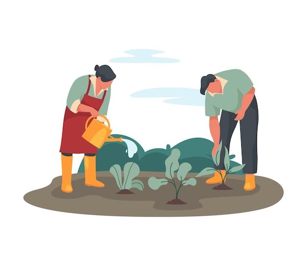 Agriculteurs arrosant une culture ou sur un lit de jardin