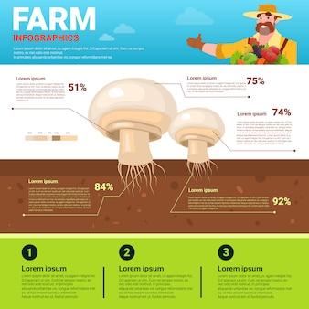 Agriculture infographie bio écologique naturel naturel croissance végétale bannière