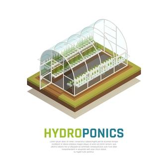 Agriculture de réservoir d'eau