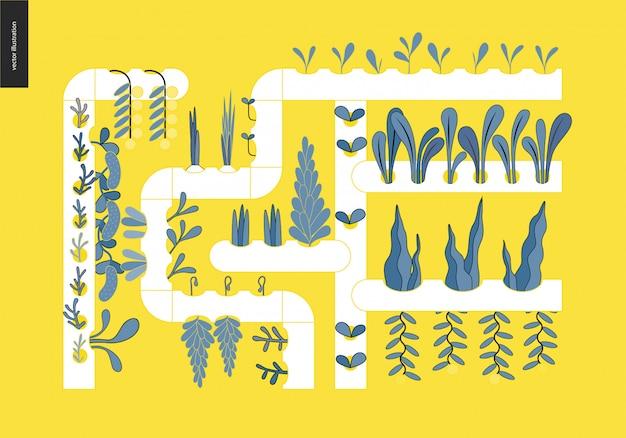 Agriculture urbaine et jardinage - culture hydroponique