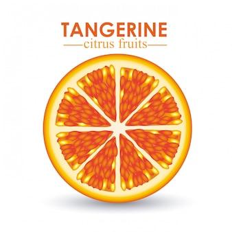 Agrumes mandarine