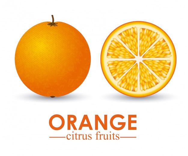 Agrumes orange
