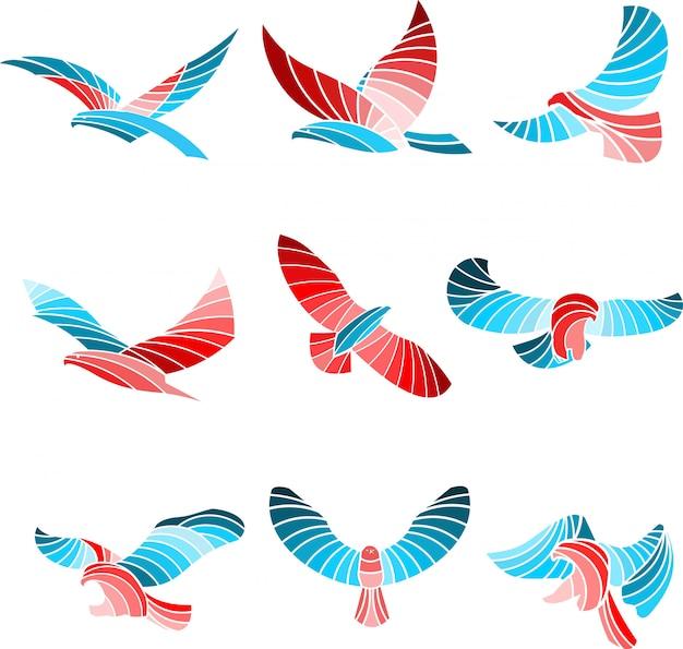 Aigle coloré