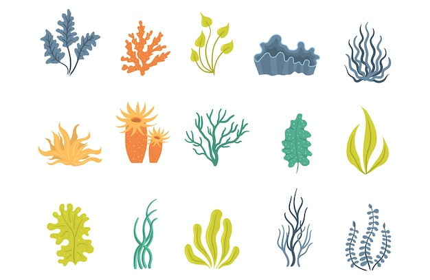 Algues sous-marines mer plantes marines coquillages algues aquatiques mis silhouettes de coraux océaniques