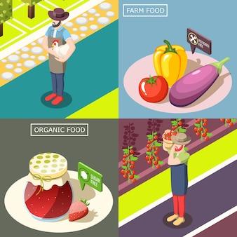 Alimentation biologique, récolte de légumes sans pesticides, conserves de baies sans sucre, isométrique.