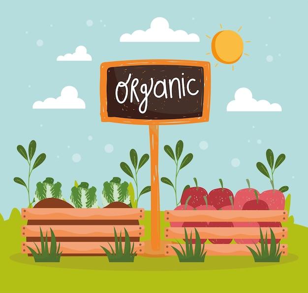 Aliments biologiques et de récolte