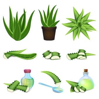 Aloe icônes définies. jeu de dessin animé d'icônes d'aloès