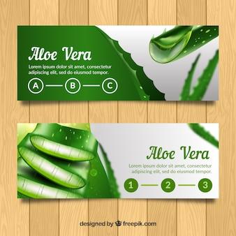 Aloe vera bannières en style réaliste