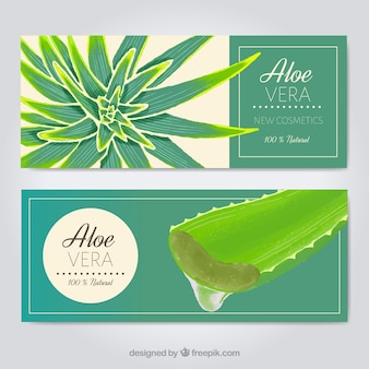 Aloe vera cosmetics banner