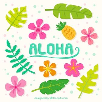 Aloha background avec des fleurs et des feuilles