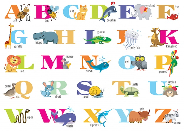 Alphabet anglais pour enfants avec des animaux mignons