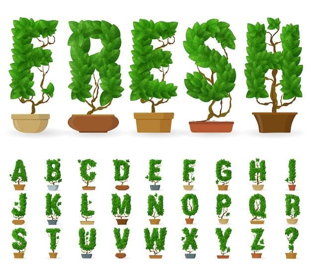 Alphabet d'arbre en pot de lettres faites de feuilles vertes.