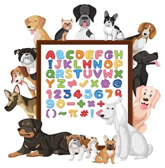 Alphabet az et symboles mathématiques sur une planche avec de nombreux chiens mignons