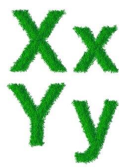 Alphabet d'herbe verte, grandes et petites lettres x, y