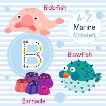 Alphabet de la mer lettre b