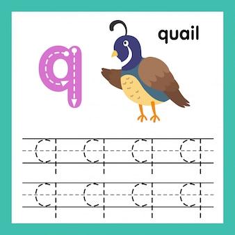 Alphabet q exercice avec illustration de vocabulaire de dessin animé, vector